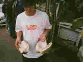 HO19 Skate LTD Alltimers 85100009